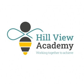 Hill View Academy logo design for schools case study